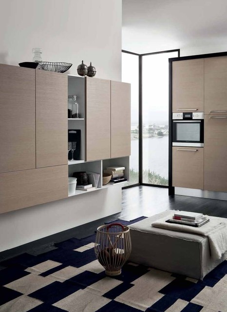 Contemporary Kitchen - Pro12 contemporary-kitchen-cabinetry