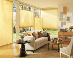 Applause® honeycomb shades with LiteRise® contemporary cellular shades