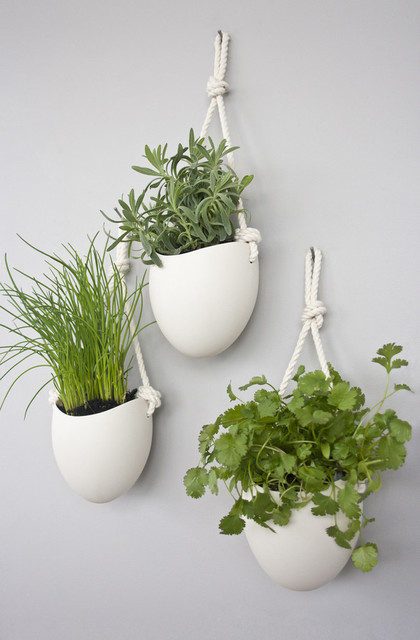 ... Cotton Rope Planters, Set of 3 contemporary-indoor-pots-and-planters