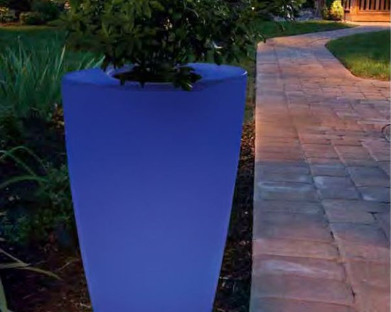 Rechargeable Indoor-Outdoor Planter - Illuminated indoor-outdoor planter rotates through several colors and is rechargeable.