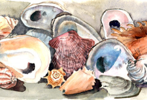 Sea Shells Fabric Standard Pillowcase Moisture Wicking Material beach-style-pillowcases-and-shams