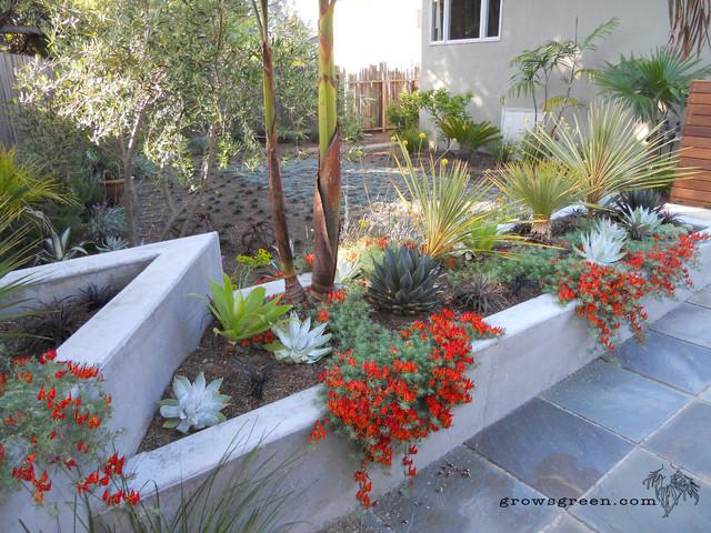 Succulent Planter Wall Contemporary Landscape San 2015 | Home Design ...