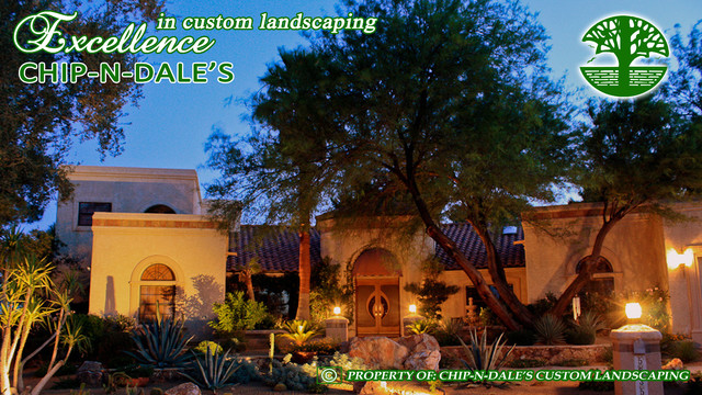 CHIP-N-DALES CUSTOM LANDSCAPING eclectic landscape
