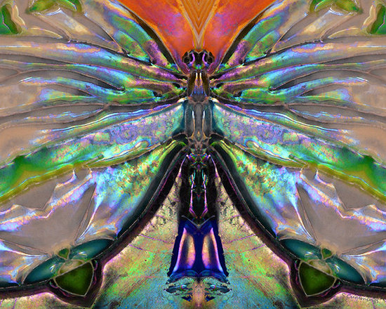Animals, Fish and Birds - Her Heart Has Wings - Spiritual Art By Sharon Cummings. Buy Fine Art Prints Online.