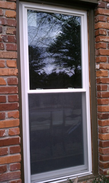 Replacement Window Project traditional