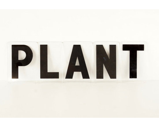 Vintage Sign Letters, 'Plant,' Black on Clear Acrylic by Third Shift -