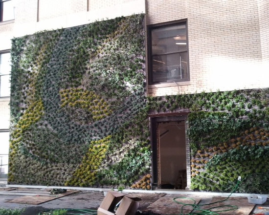 Detroit Source One Living Wall -