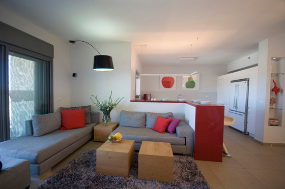 Apartment in Modiin modern-living-room