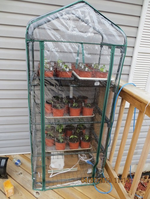 ideas for homemade indoor greenhouse
