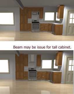 Venting Hood or Convection Microwave & cabinet?