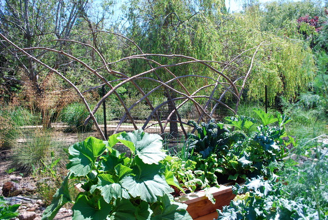 Redwood Branch Trellises eclectic-outdoor-products