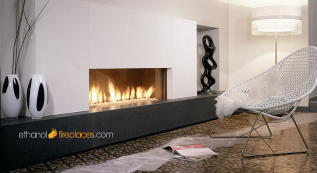 Ethanol Burner Insert Projects Contemporary Indoor