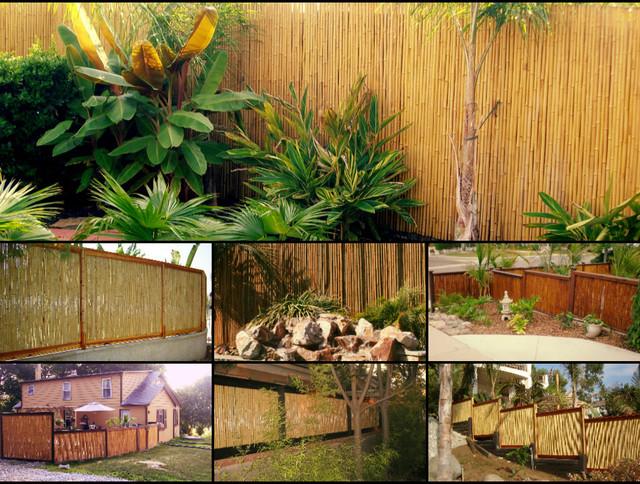Bamboo Fencing - Tropical - san diego - by Backyard X ...