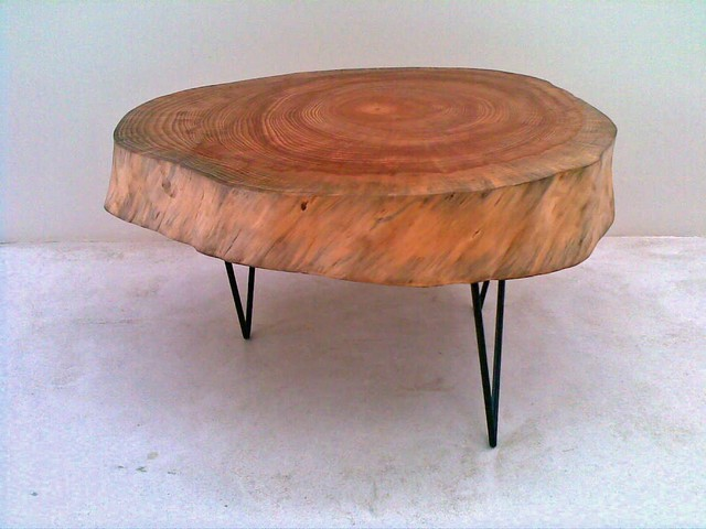 Side table made from stone pine tree slice for Tree slice coffee table