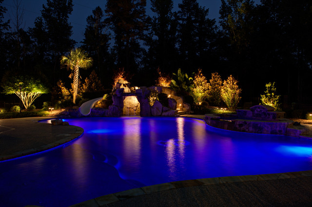 Low Voltage Landscape Lighting - Tropical - Pool - charlotte - by Fine Edge Landscape Design