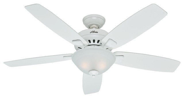 Hunter Banyan Ceiling Fan in Snow White traditional-ceiling-fans