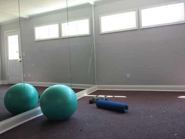 Detached garage to gym renovation