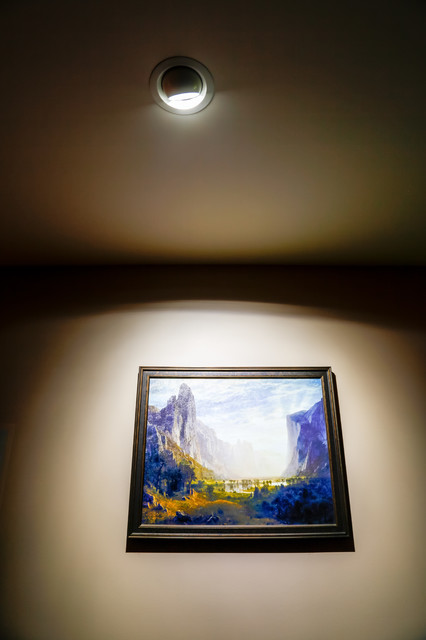 Led Aimable Ceiling Spot Light To Highlight Artwork