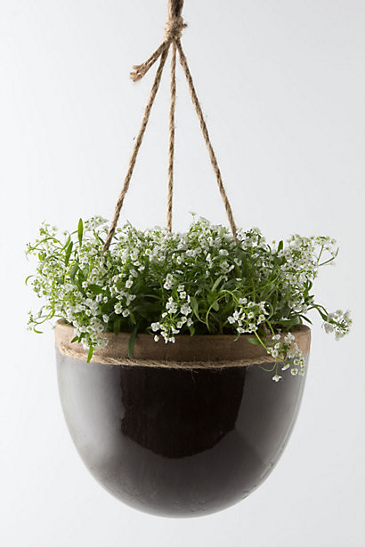 Mulberry Hanging Planter - Contemporary - Outdoor Pots And Planters ...