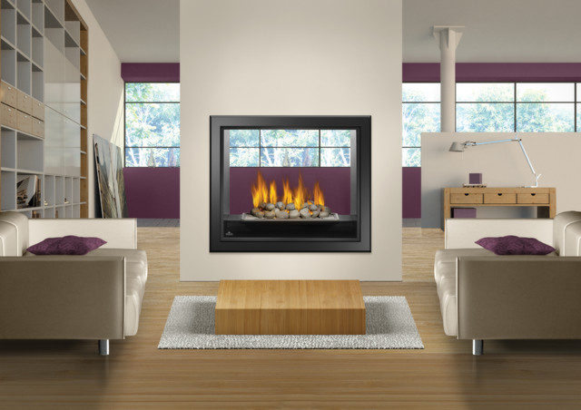 See Thru Fireplace Hd81 Napoleon 39 S Large Viewing Area Double Sided Modern Indoor Fireplaces