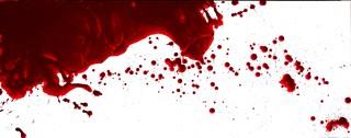 ... Custom Bloodstain Pattern Paintings - Modern - Artwork - phoenix - by