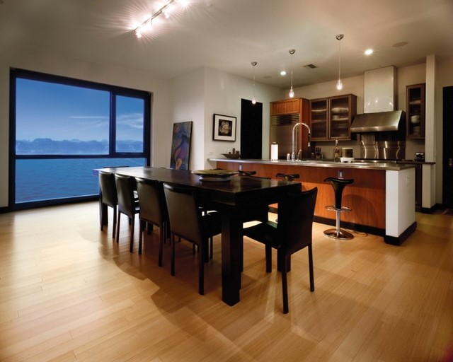 Tanner Residence contemporary-dining-room