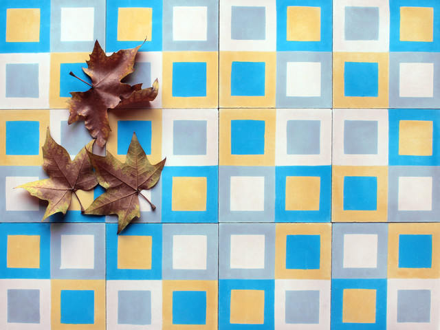 Encaustic Tiles contemporary-wall-and-floor-tile