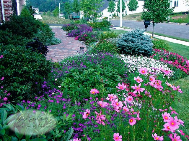 Front yard planting design traditional landscape new for Colorful front yard landscaping