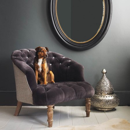 The Jester Armchair traditional-accent-chairs