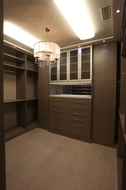 Great New Closet contemporary