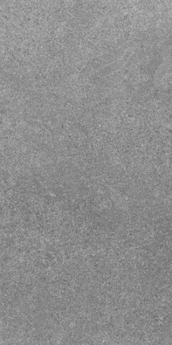 "Lab 21 Grey Matte 12"" x 24"", Grey Matte, 12"" X 24"", 12.00 Square Feet Per Carton contemporary-wall-and-floor-tile"
