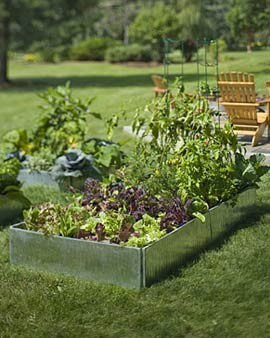 Galvanized Raised Beds contemporary outdoor planters