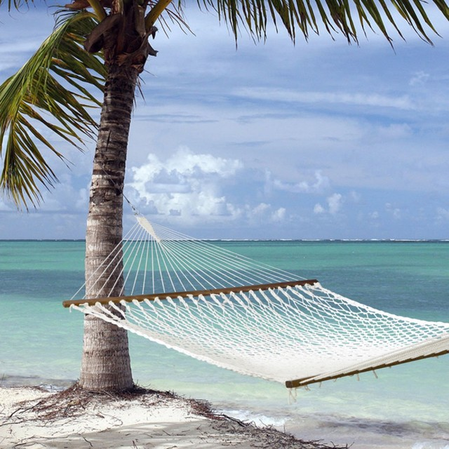 Island Bay Executive XXL Rope Hammock tropical-hammocks