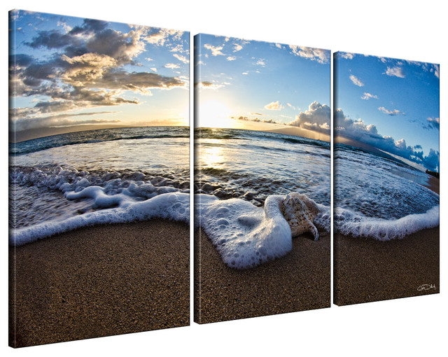 Ready2hangart christopher doherty 39sea star ii39 3 piece for Kitchen cabinets lowes with three piece canvas wall art