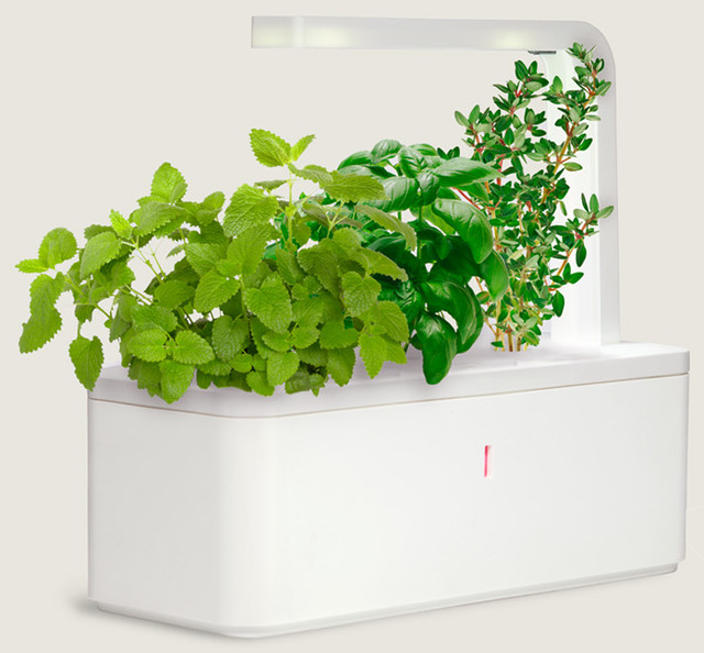 Smart Herb Garden Contemporary Indoor Pots And