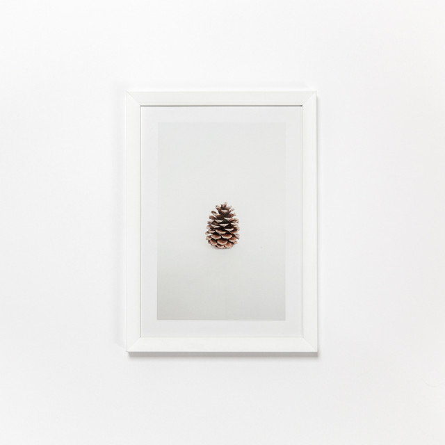 Pinecone Print contemporary-prints-and-posters