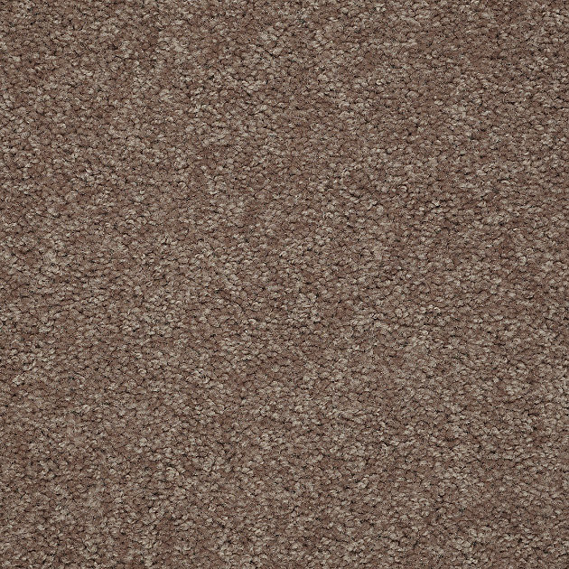 Beach Party Carpet Antique Leather Contemporary Area  : contemporary carpet flooring from www.houzz.com size 630 x 630 jpeg 258kB