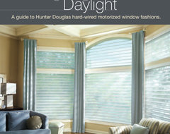 Hunter Douglas Silhouettes....one of my favorites!  window blinds
