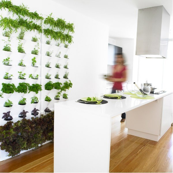 indoor outdoor living wall planters contemporary