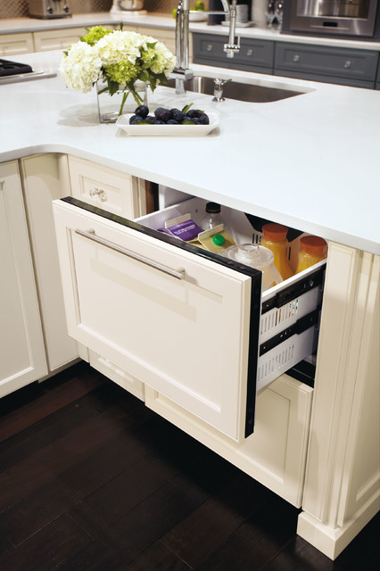 Omega Refrigerator Drawer contemporary-kitchen-cabinetry