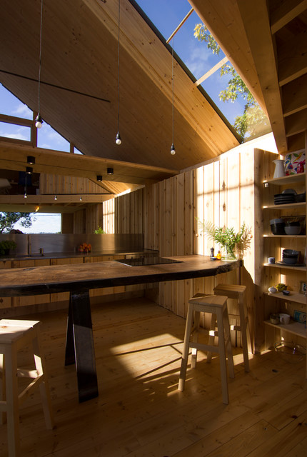 Grand designs house the black tree - Grand design kitchens ...