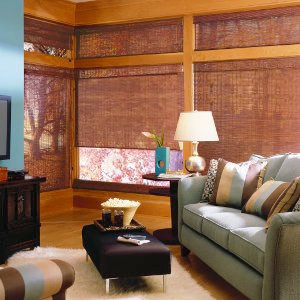 Blindsgalore Natural Woven Shades: Essentials contemporary-window-treatments