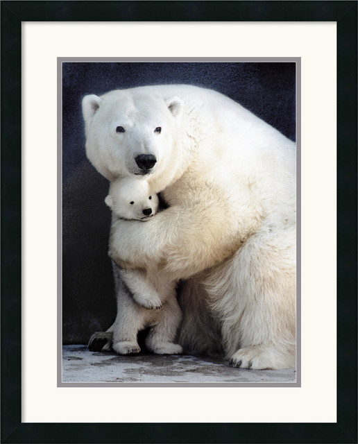 Bear Hug Framed Print by Egan traditional-prints-and-posters
