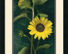 Two Sunflower Stems Framed Print by Christina Florkowski traditional prints and posters