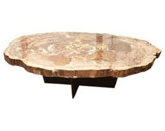 Petrified Wood Coffee Table contemporary-coffee-tables