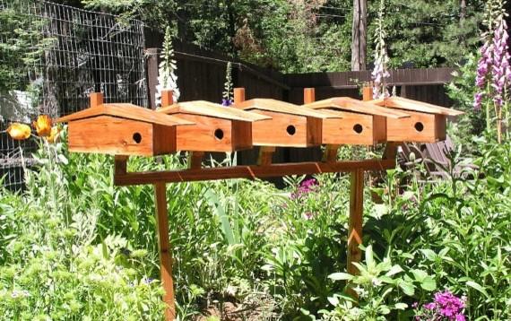 Bird Condo, Bird House or Bird Feeder Mounting Pole, Display Rack and Platform. - Modern - Bird ...