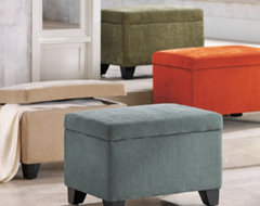Alanna Storage Ottoman traditional-footstools-and-ottomans