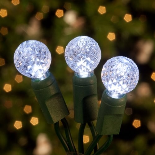 Commercial 70 ct. White Raspberry LED Light Set with Green Wire 6 in. Spacing (C contemporary-holiday-decorations