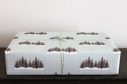 Contemporary Holiday Decorations by Kate & Birdie Paper Co.