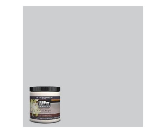 Behr Premium Plus Ultra #770E-2 Silver Screen Interior/Exterior Paint Sample - A barely gray wall color is the perfect backdrop for beautiful artwork.